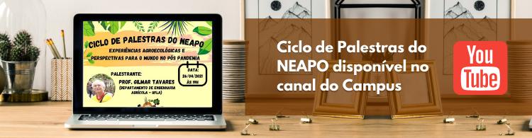 Confira o Ciclo de Palestras do NEAPO no Youtube!